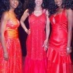 The Supremes tribute