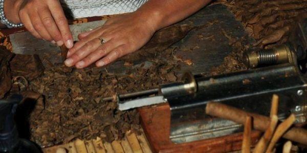 Workshop sigaren maken